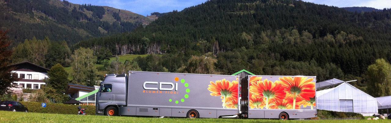 CDI Blumen -Fiori