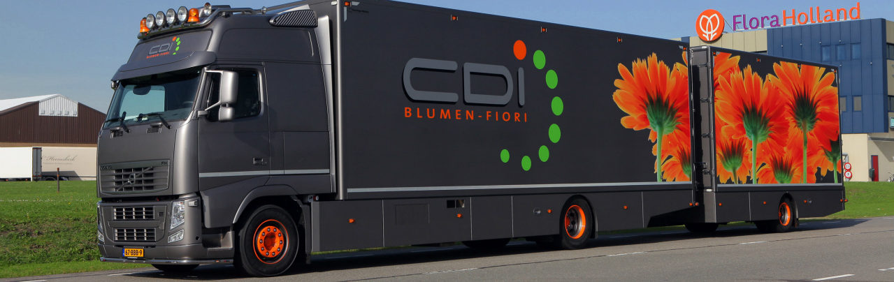 CDI Blumen - Fiori